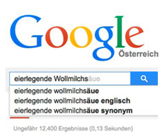 Google, die eierlegende Wollmilchsau